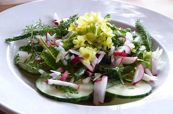 Kochkurs: Jetzt haben wir den Salat!